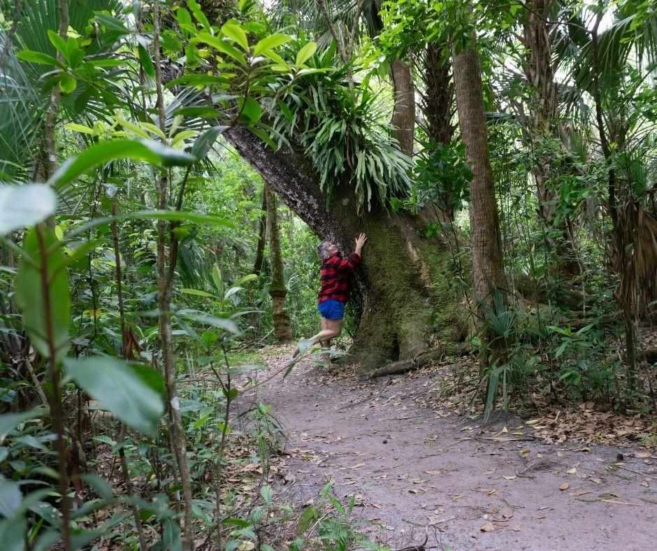 Dendrophile (noun): A Person Who Loves Trees. Me, Tree Hugging in Highlands Hammock State Park, Sebring, Fla.